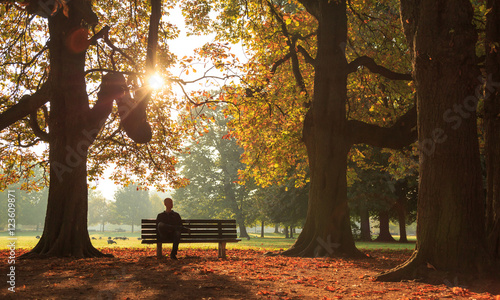 Fotografia Man sitting on a bench in a park on a sunny autumn morning.