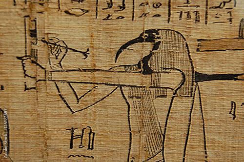 Fototapeta Egyptian scribe Hieroglyph closeup on papyrus