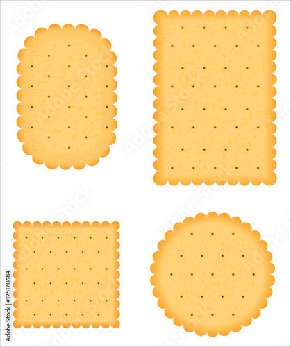 Fotografie, Obraz a biscuit vector
