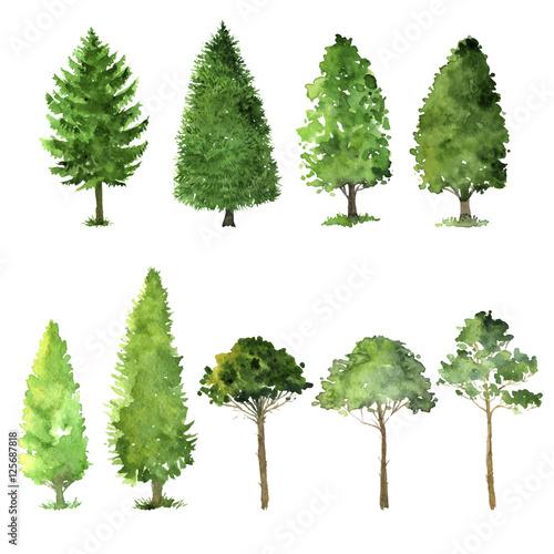 Cuadros en Lienzo set of trees drawing by watercolor