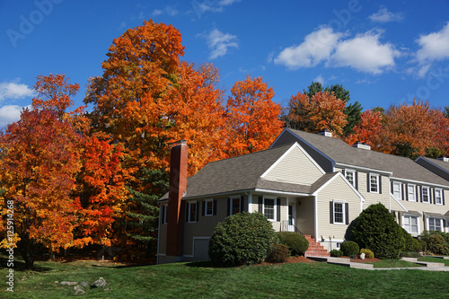 Slika na platnu apartment building with colorful autumn trees