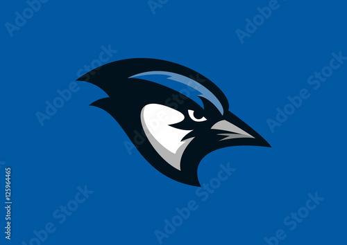 Canvas Print blue jay bird sport mascot