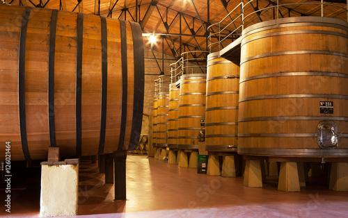 Oak Wine Vats, La Rioja