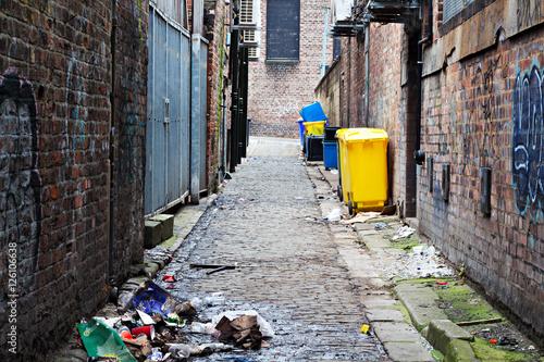 Wheelie bins in a garbage strewn alleyway Fototapet