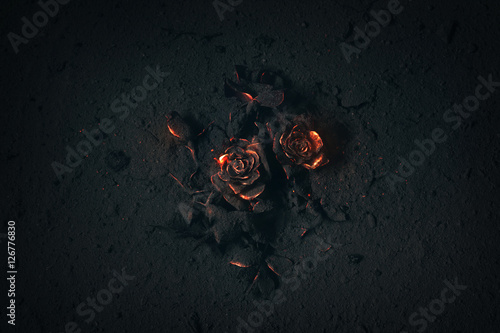 Canvas Print Rose buried in ashes