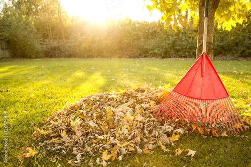 Photo Autumn Chores