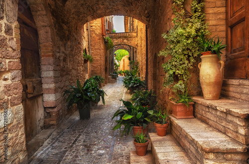 Plants in pots on narrow streets of the ancient city of Spello, Umbria, Italy