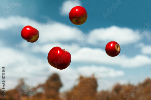 Tablou Canvas ripe apples in zero gravity thrown into the air