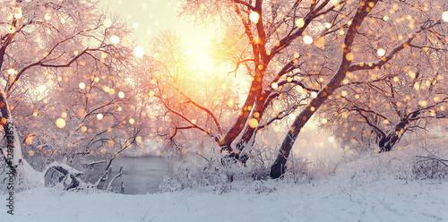 Canvas Sunny Christmas morning. Sun illuminate snowflakes.