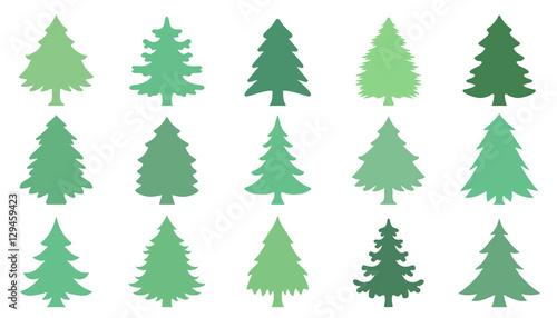 Fotografía christmas tree green