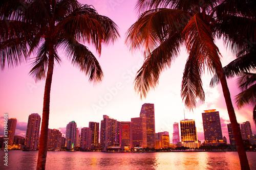 Fototapeta premium Miami Floryda linia horyzontu i zatoka przy zmierzchem przez dwa drzewek palmowych.