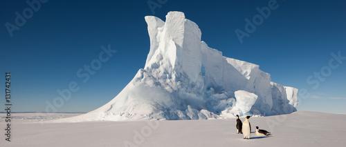 Photo Emperor penguins in front of massive iceberg