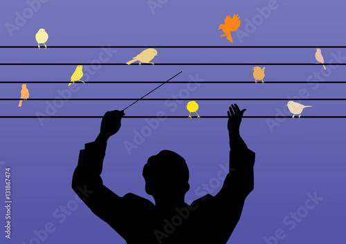 Foto Chef dirigeant une chorale d'oiseaux