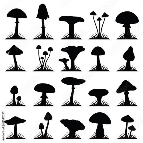 Valokuvatapetti Mushroom and toadstool collection - vector silhouette