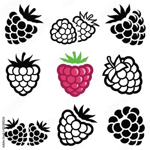 Carta da parati Raspberry icon collection - vector illustration