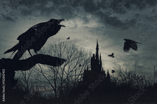 horror scene with a raven in front and castle at  back under rain at dusk on blue background
