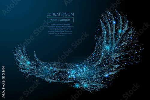 Fotografia Eagle in flight from abstract polygonal points blue