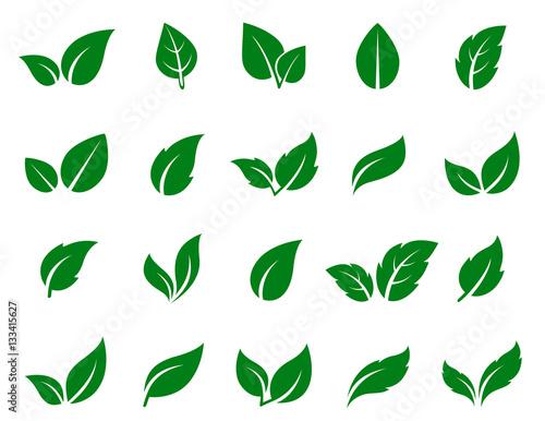 Canvas Print green leaf icons set