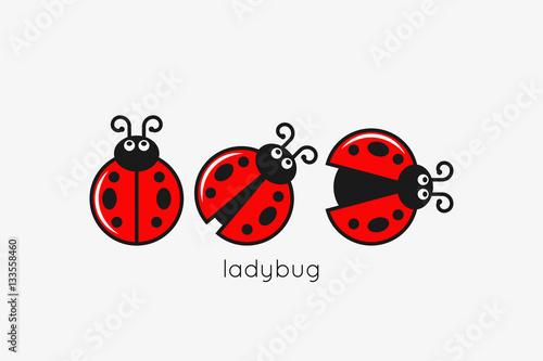 Fotografia Ladybug Logo Set On White Design Background