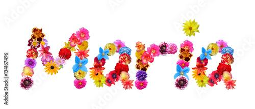 Fotografia Maria Flower Name