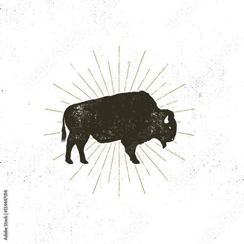 Fotografía bison icon silhouette