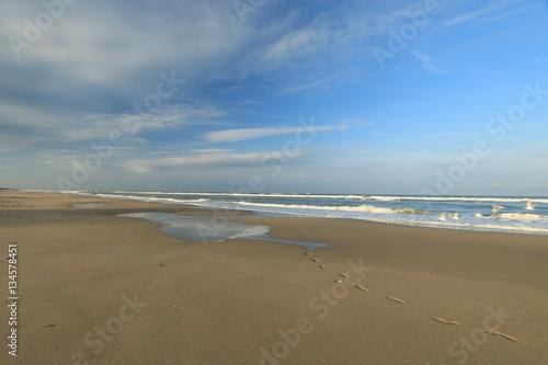 Fototapeta beach of the Touquet , côte d opale, pas de Calais ,hauts de France , France