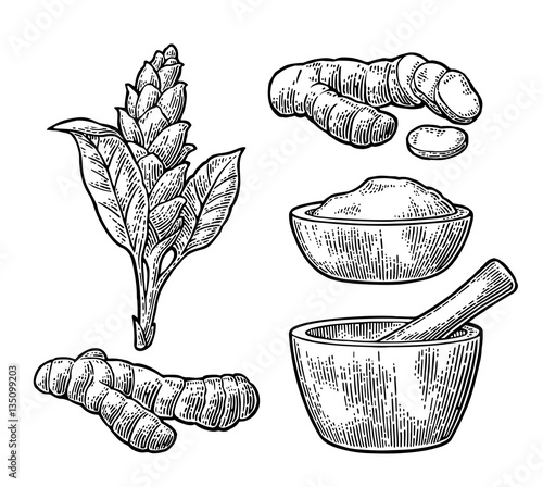 Fotografia Turmeric root, powder and flower with pestle and mortar.