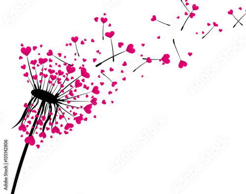 Walentynki tło z miłości dandelion.