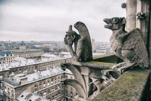 Fotografia gargoyle sits on top of Notre Dame