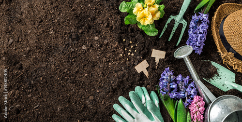 Spring garden works. Gardening tools and flowers on soil.