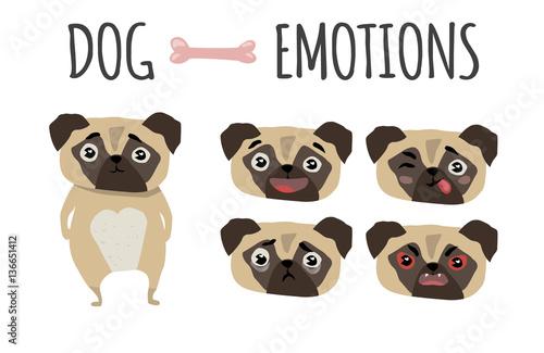 Fotografia Cute dog. Set of emotions