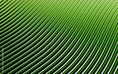 Fototapeta premium Zielony abstrakcjonistyczny wizerunek linii tło. Renderowania 3d