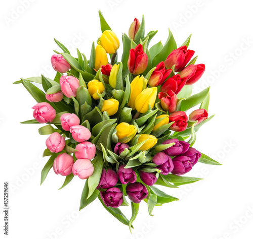 Canvas Print Tulip flower Bouquet isolated white background
