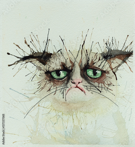 Koty akwarela.