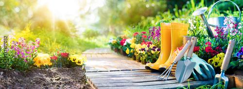 Valokuva Gardening - Set Of Tools For Gardener And Flowerpots In Sunny Garden