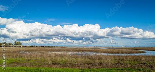 Obraz na plátně Yolo bypass wildlife area marshland pano