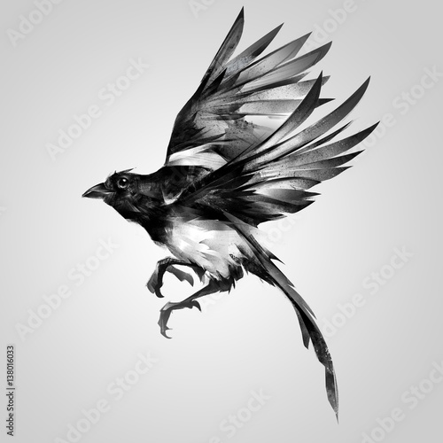 Photo isolated painted realistic sketch magpie in flight