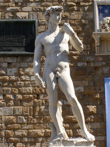 Fototapeta premium Dawid, Florencja