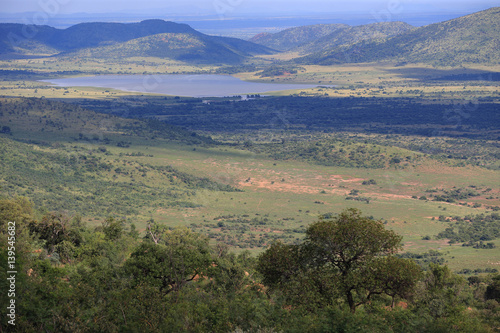 Sawanna w parku narodowym Pilanesberg