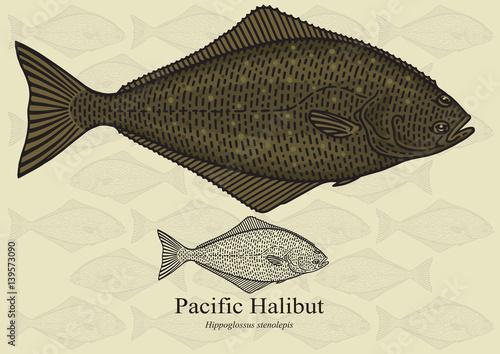 Canvas Print Pacific Halibut