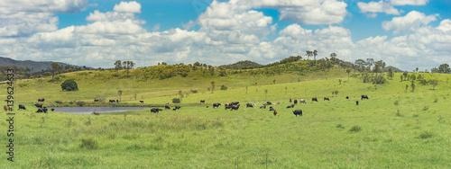 Fényképezés Panoramic Australian Rural Landscape