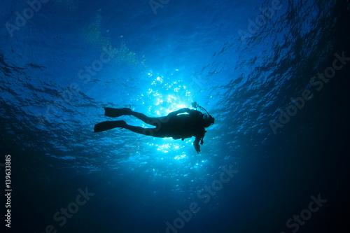 Obraz na płótnie Scuba diving