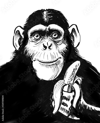 Cuadros en Lienzo Chimpanzee with a banana