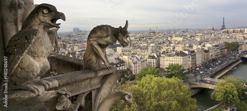 Fotografia, Obraz Gargoyle, Notre Dame, Paris, France