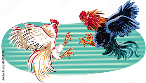 Canvastavla Two cocks facing each other in a fight.
