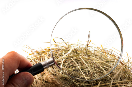 """Photo The idiom or the figure of speech """"look for a needle in a haystack"""" is used to describe something elusive in a large space or a sisyphean task"""