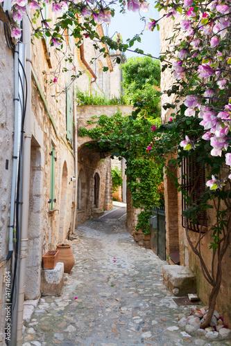 Fototapeta premium piękne stare miasto kamienna ulica Prowansji w dzień wiosny, Francja
