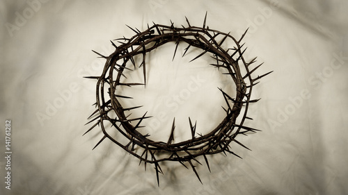 Leinwand Poster Crown of Thorns – Center (Real Thorns)