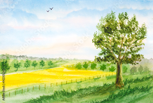 tło akwarela krajobraz lato pole, drzewa, niebo z chmurami