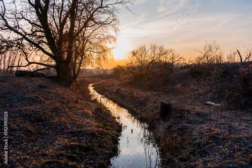 Fotografia Sunset reflected in a meandering stream